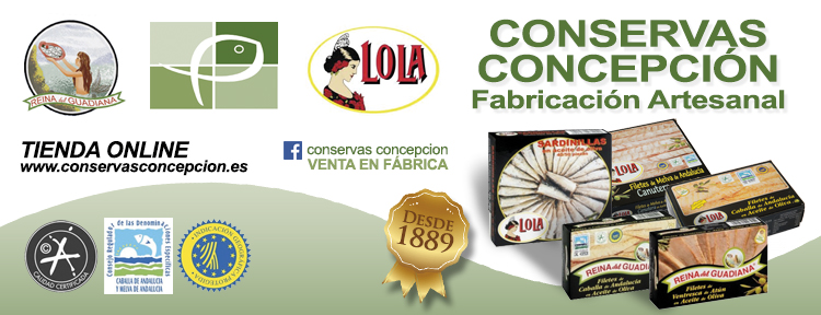 baner_superior_conservas_concepcion